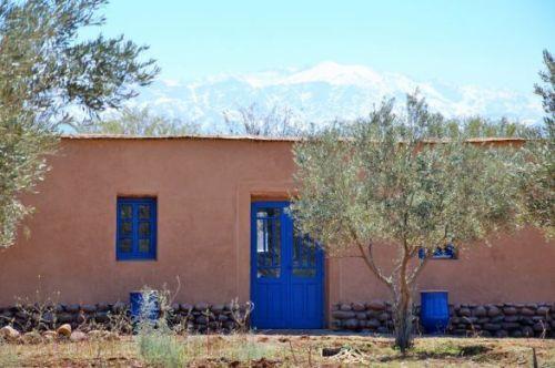 Photo: Marrakesh Organics