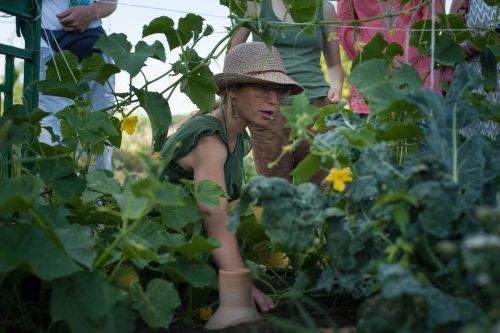 Photo: NGO Permaculture Ukraine
