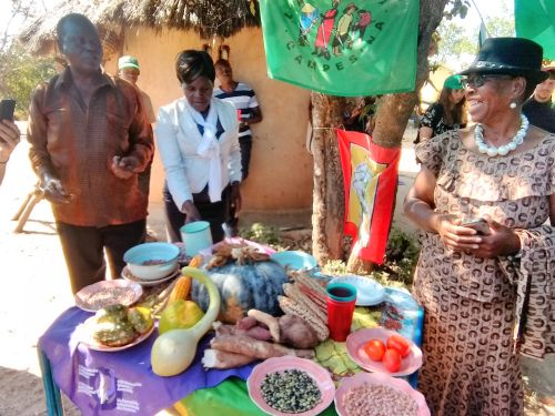 Photo: منتدى المزارعين أصحاب الأراضي الصغيرة في زمبابوي (ZIMSOFF)