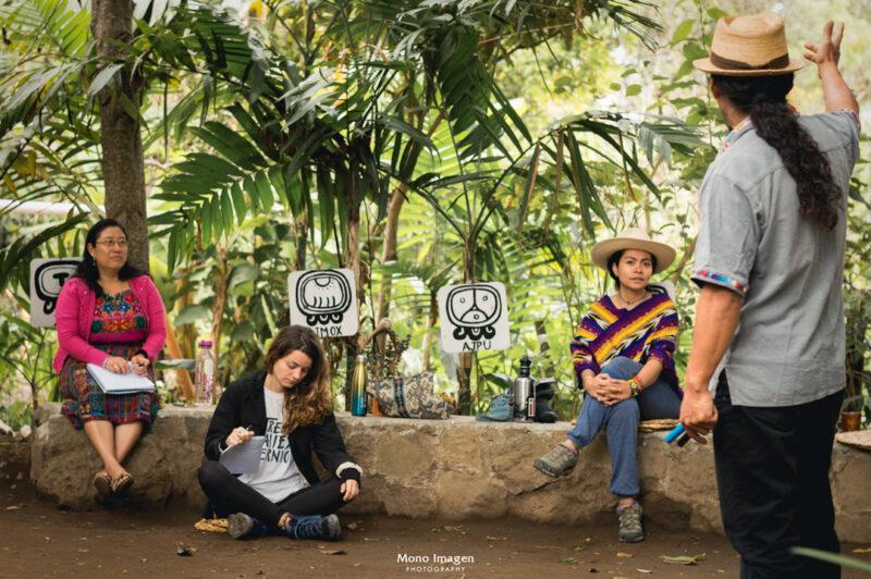 Photo: Instituto Mesoamericano de Permacultura (IMAP)