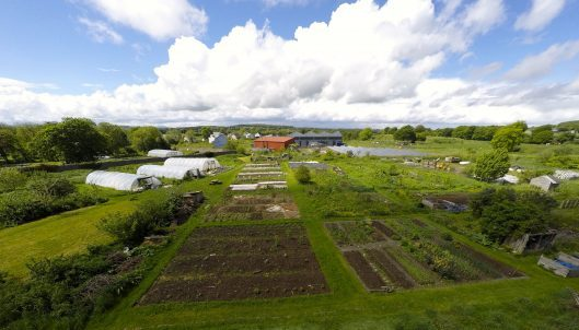 Photo: GrowPlace @ Cloughjordan Ecovillage: An Ecosystem of innovation and regeneration coordinated by Sustainable Projects Ireland CLG (SPI)