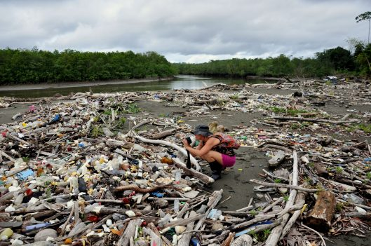 Photo: Project Planet Clean Up